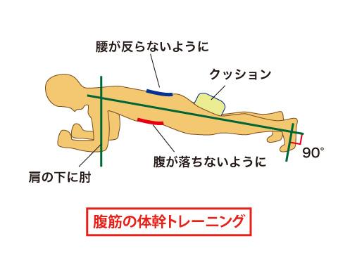 腹筋の体幹トレーニング