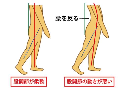 股関節の柔軟性